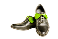 Isolated italian leather shoes Royalty Free Stock Photos