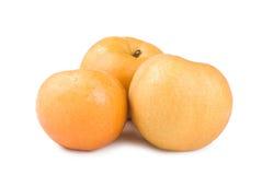 Isolated Japanese pear Stock Photos