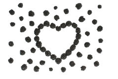 Isolated juicy heart of blackberries royalty free stock image