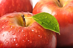 Isolated juicy red apple Stock Images