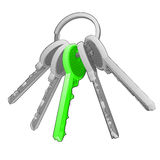 Isolated key ring with green one on white vector. Illustration Stock Images