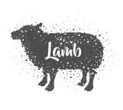 Isolated lamb animal design Stock Photo