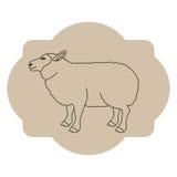 Isolated lamb livestock animal design Stock Photos