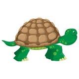 Isolated land tortoise. Illustration Isolated land cartoon tortoise Stock Photo