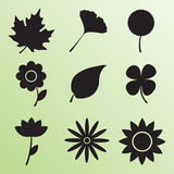 Isolated leaf and flower icon Royalty Free Stock Photography