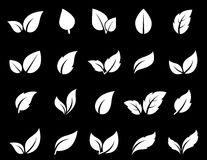 Isolated leaf icon set Royalty Free Stock Photography