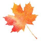isolated leaf maple δέντρο φύλλων πτώσης ανασκόπησης φθινοπώρου κίτρινο Απεικόνιση Dotwork Στοκ Φωτογραφίες