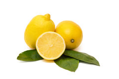 Isolated Lemons Stock Images