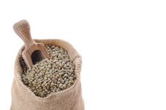 Isolated lentils. Royalty Free Stock Image