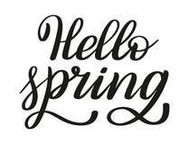 Hello spring. Brush pen lettering. Vector. stock illustration