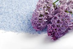 Isolated lilac bath salts with flowers Stock Photos