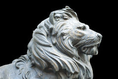 An isolated lion's head on black background Royalty Free Stock Photos