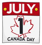 Loose-leaf Calendar with the Date and Maple Outline for Canada Day, Vector Illustration. Isolated loose-leaf calendar with a maple outline in brushstroke style Stock Photography