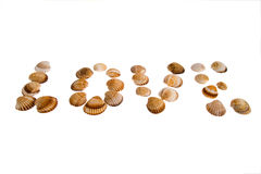 Isolated Love text from shell Royalty Free Stock Photography