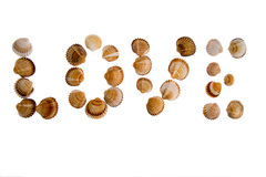 Isolated Love text from shell Royalty Free Stock Image