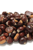 Isolated macro image of raw chestnuts Stock Photography
