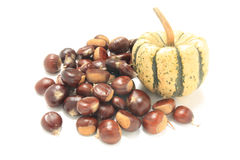 Isolated macro image of raw chestnuts and pumpkin Stock Image