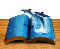 Isolated magic book with three dolphins. Magic book with three dolphins jump from book page on wood background Stock Photography