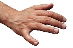 Isolated male human hand Stock Images