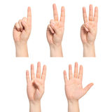 Isolated man hands show the number one, two, three, four, five. Set of isolated man hands show the number one, two, three, four, five Stock Photo