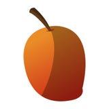 Isolated mango design Royalty Free Stock Image