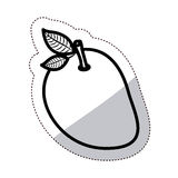 Isolated mango fruit design Stock Images
