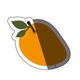 Isolated mango fruit design Royalty Free Stock Photos