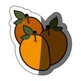 Isolated mango fruit design Royalty Free Stock Image
