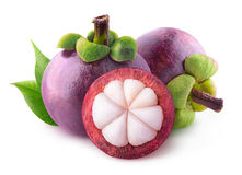 Isolated mangosteens Royalty Free Stock Photos