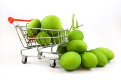 Isolated many green mangoes in the basket stock images
