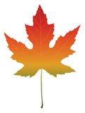 Isolated maple leaf. With autumn color gradient. Vector illustration Royalty Free Stock Photo