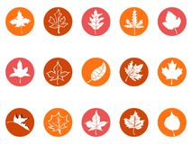 Maple leaf round button icons stock illustration