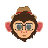 Isolated monkey cartoon design. Monkey cartoon with hat and glasses icon. Animal wildlife ape and primate theme. Isolated design. Vector illustration Royalty Free Stock Images
