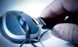 Isolated mouse and hand holding usb Stock Photo