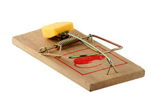 Isolated mouse trap. On white stock photography