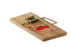 Isolated mouse trap Royalty Free Stock Images