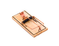 Isolated Mouse Trap. A set mouse trap isolated on a white background royalty free stock photo