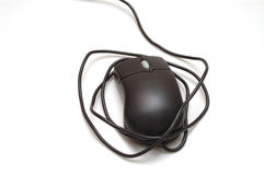 Isolated mouse with wire. Isolated black mouse with tousle wire royalty free stock photography