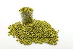 Isolated mung bean stock photo