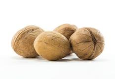 Isolated Natural Walnuts Stock Photo