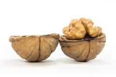 Isolated Natural Walnuts Stock Photos