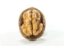 Isolated Natural Walnuts Royalty Free Stock Photo