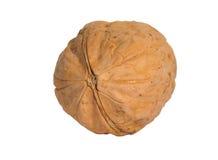 Isolated nut. Macro photo of a isolated nut stock photos