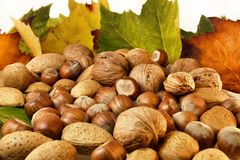 Isolated Nuts and autumn leaves Royalty Free Stock Image