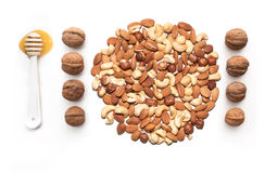 Isolated nuts and spoon with honey. Isolated almonds, cashew, hazelnut walnut and spoon with honey Stock Photos