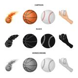 Isolated object of ball and soccer icon. Collection of ball and basketball stock vector illustration. Vector design of ball and soccer symbol. Set of ball and vector illustration