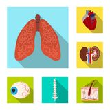 Isolated object of body and human sign. Set of body and medical vector icon for stock. stock illustration