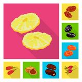 Isolated object of fruit and dried  icon. Collection of fruit and food  stock symbol for web. Vector design of fruit and dried  symbol. Set of fruit and food stock illustration