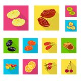 Vector illustration of fruit and dried  logo. Set of fruit and food  stock symbol for web. Isolated object of fruit and dried  icon. Collection of fruit and stock illustration