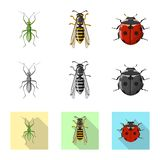 Vector illustration of insect and fly sign. Collection of insect and element stock vector illustration. stock illustration